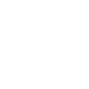eurisy logo